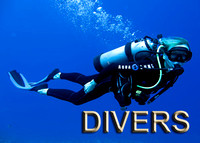 divers-cover