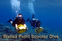 Wailea Point Scooter Dive